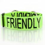 Friendly_Collar_EKP_9682-1024x681
