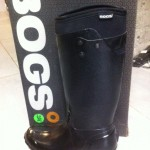 bogs1
