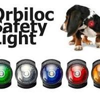 orbi hond